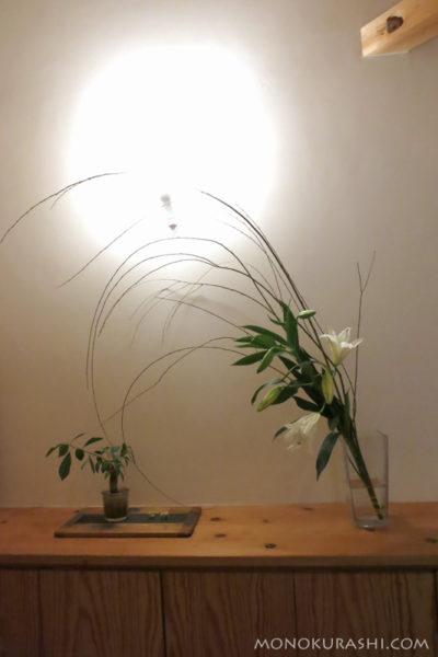 しだれ柳とオリエンタルリリーを花瓶に活けて