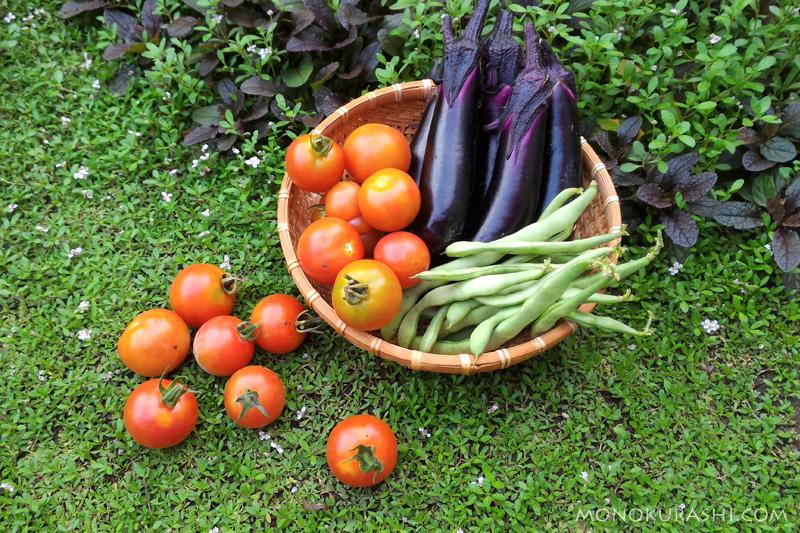 2017年夏の収穫した野菜