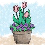 秋に植えて、春に楽しむ。チューリップとビオラの寄せ植え